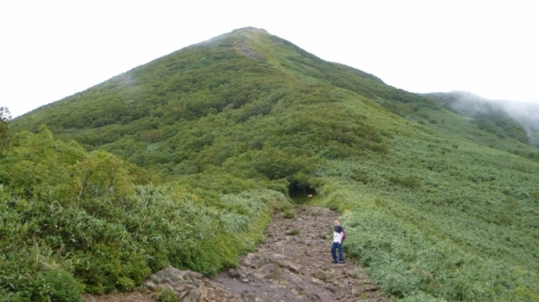 Climbing Niseko Annupuri (二セコアンヌプリ登山)