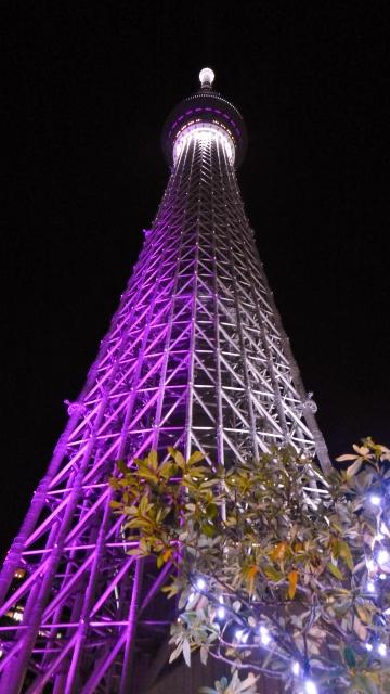 sky tree (360x640)